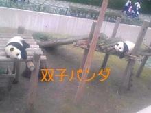 tamanya1219さんのブログ-111103_1101~01_Ed.JPG