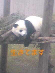 tamanya1219さんのブログ-111103_1102~01_Ed.JPG