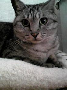 tamanya1219さんのブログ-111119_0911~01.JPG