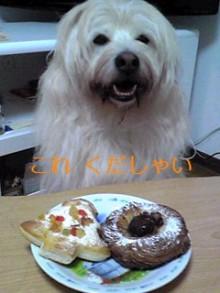tamanya1219さんのブログ-111204_2008~01_Ed.JPG
