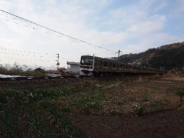 P1165227(1).jpg