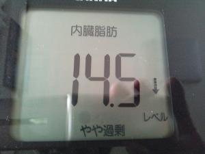 150630_内臓脂肪 (300x225)
