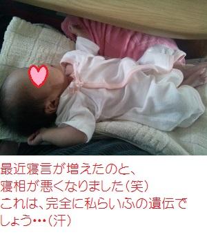 @いちご 7月3日膝の上での睡眠 (300x225)