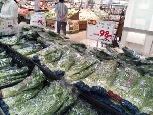 水菜と小松菜 (300x225)