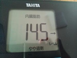 150704_内臓脂肪 (300x225)