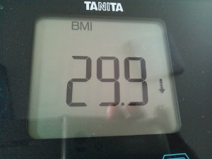 150704_BMI (300x225)