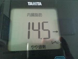 150715_内臓脂肪 (300x225)