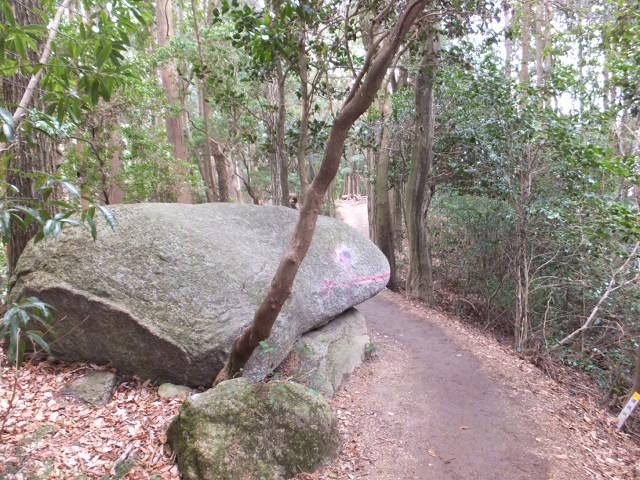 お馴染み蛙岩