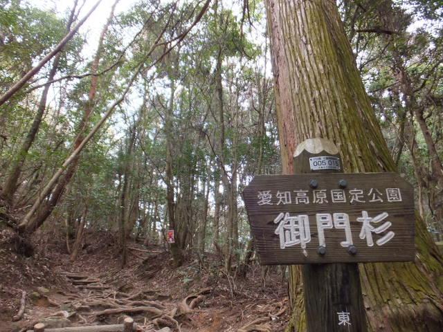 林道からの入り口