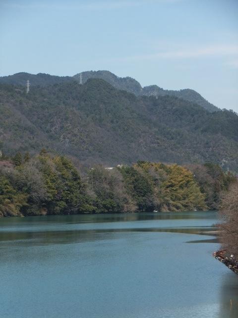 飛騨川と納古山