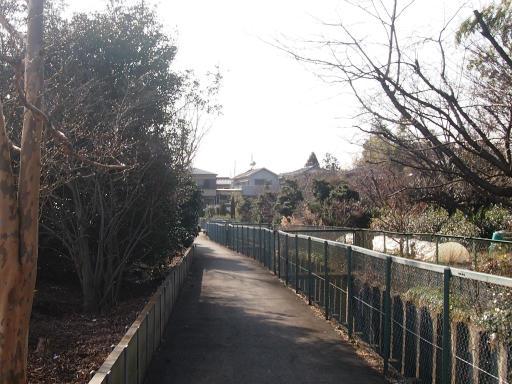 20150221・三ヶ島散歩03