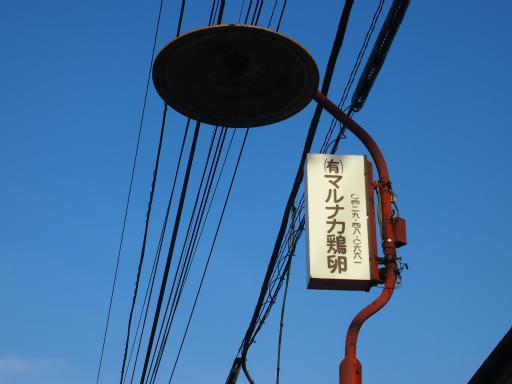 20150221・三ヶ島散歩18