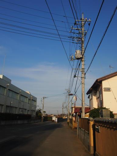 20150221・三ヶ島散歩17