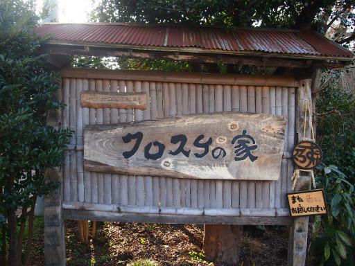 20150221・三ヶ島散歩13