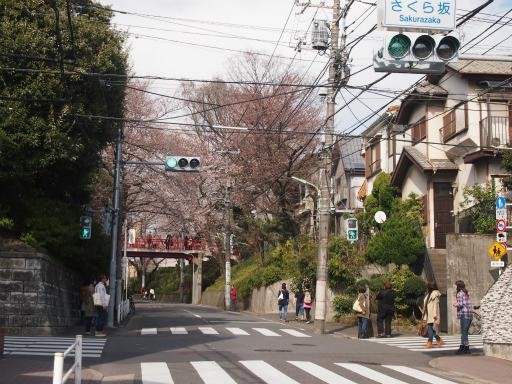 20150328・桜坂2-06