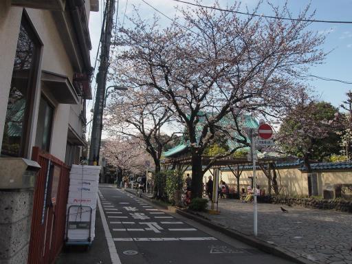 20150328・桜坂2-02