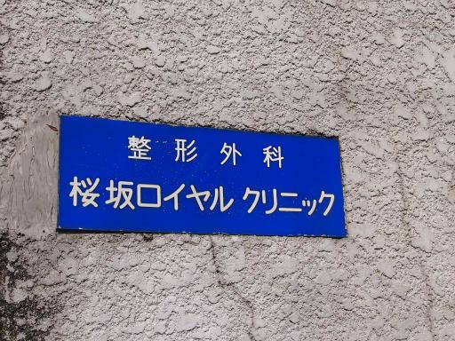 20150328・桜坂2-09