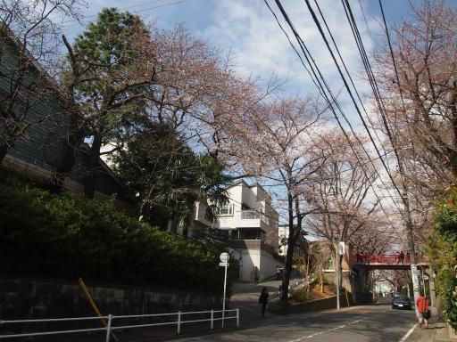 20150328・桜坂2-08