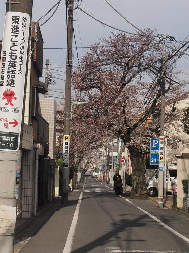 20150328・桜坂空15