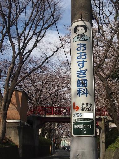 20150328・桜坂ネオン05