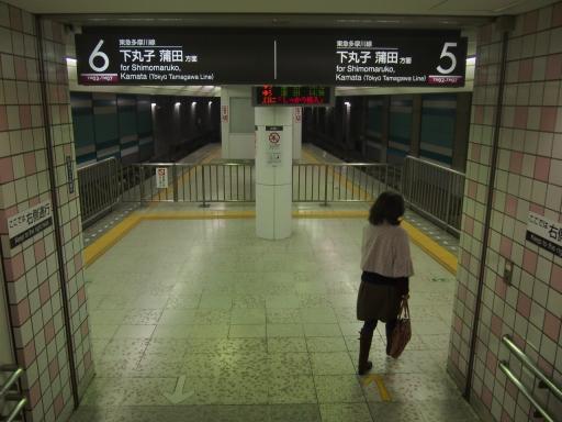 20150328・桜坂鉄05・多摩川