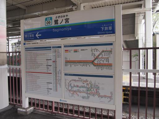 20150410・妙正寺川1-02