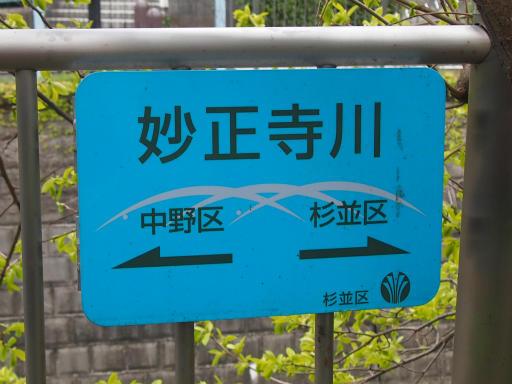 20150410・妙正寺川1-08