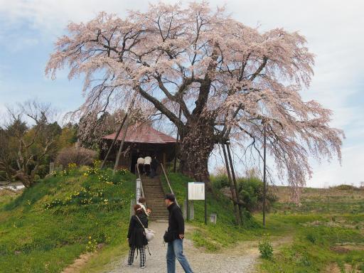 20150419・福島1-03