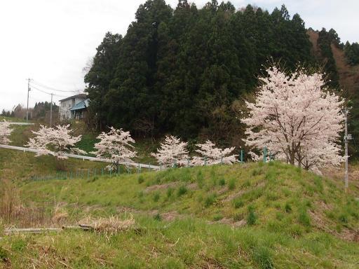 20150419・福島1-07