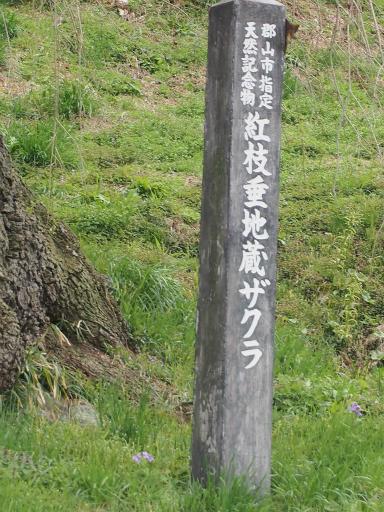 20150419・福島2-05