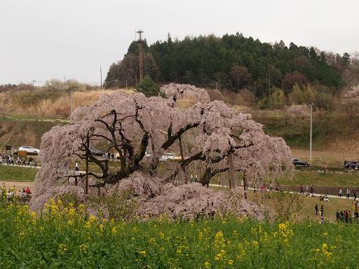 20150419・福島3-09