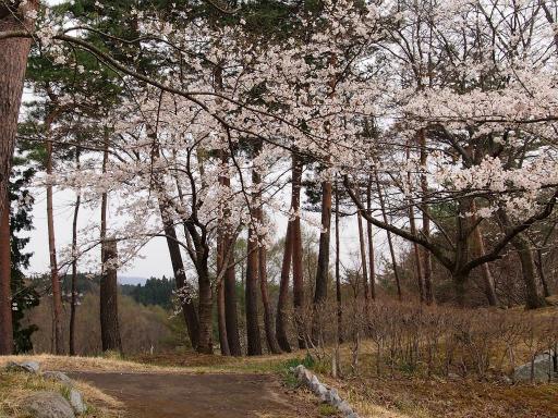 20150419・福島3-28