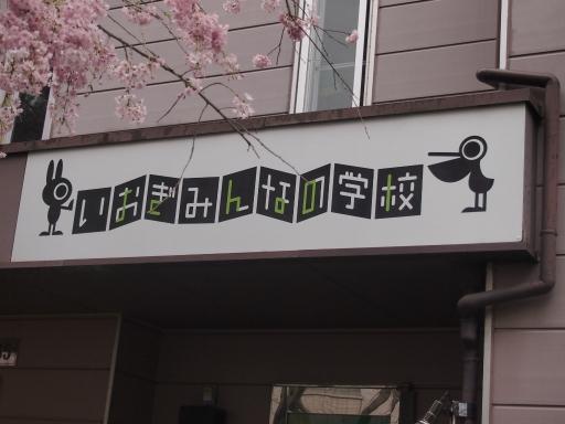 20150410・妙正寺川ネオン3-2