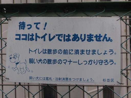 20150410・妙正寺川ネオン5