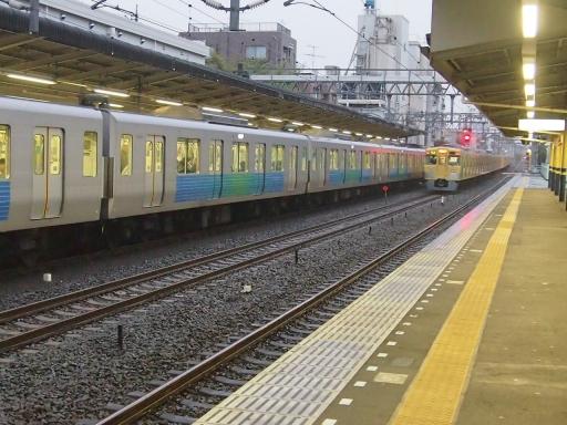 20150410・妙正寺川鉄11