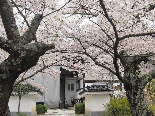 20150419・福島4-20・福聚寺