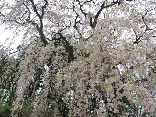 20150419・福島4-25