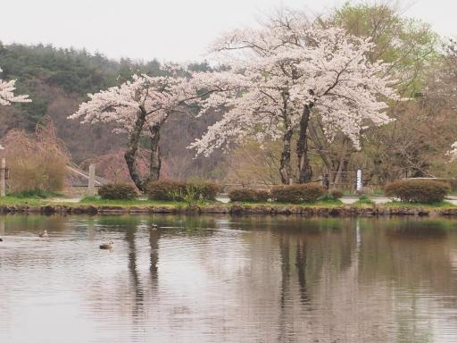 20150419・福島5-25