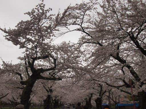 20150419・福島9-06