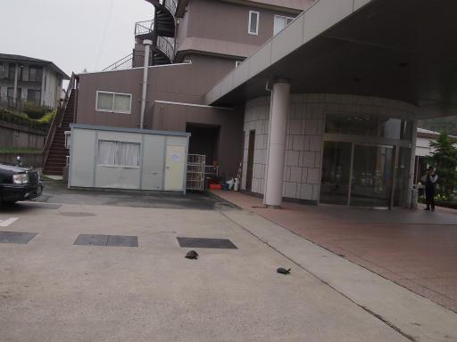 20150419・福島カメ01