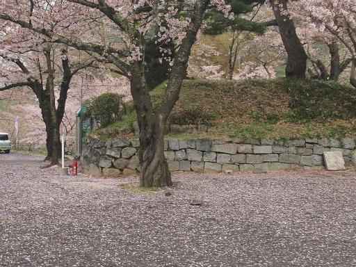 20150419・福島カメ11