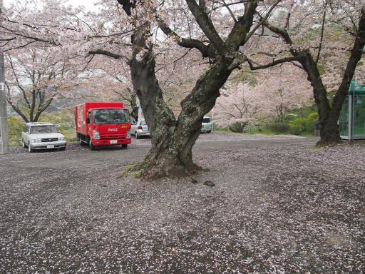 20150419・福島カメ18