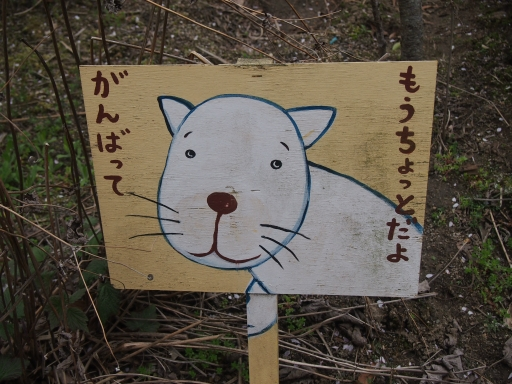 20150419・福島ネオン15