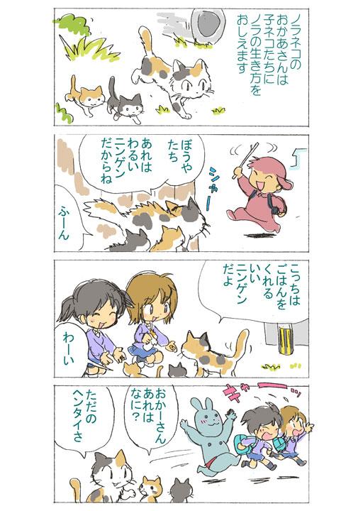 stray_cat03.jpg