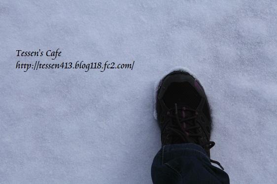 IMG_3590 - コピー