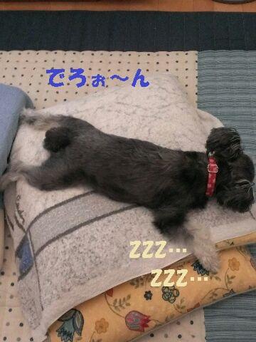 テス 寝る2