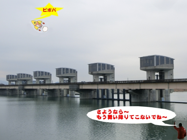 大堰管理橋