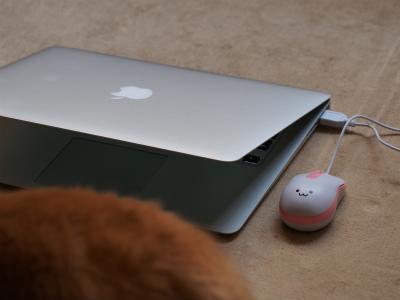 2015年3月ニューパソコンの3
