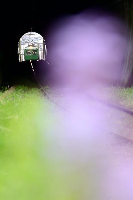 DS8_5045.jpg