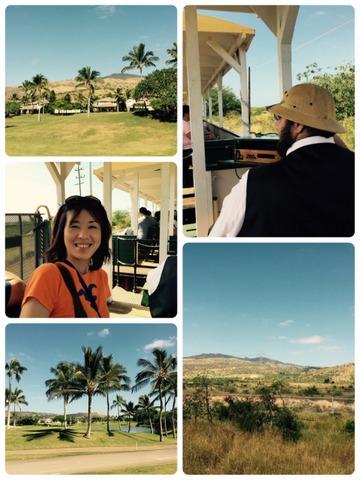 hawaiian railway (5)